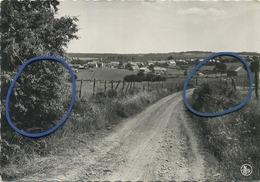 Bretogne : Panorama  ( 15 X 10.5 Cm )  Ecrit Avec Timbre - Bertogne
