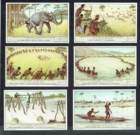 LIEBIG  - NL -  6 Chromos N° 1 à 6 -  Reeks/série S.1534 - Jacht En Visvangst In Belgisch Kongo - Chasse Et Pêche Congo. - Liebig