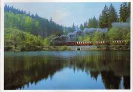 Railway,Trains,Locomotive,Harzer Schmalspurbahnen - Brocken Train At Heiligenteich - Trains