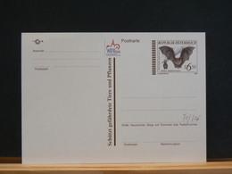 75/806  CP  AUTRICHE  XX - Bats