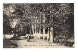 91 ESSONNE - ORSAY Chemin De L'Yvette Et Le Viaduc - Orsay