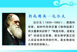 [T31-022 ] Charles Robert Darwin Naturalist, Geologist  Biologist, China Pre-stamped Card, Postal Stationery - Famous People