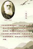 [T31-029 ] Charles Robert Darwin Naturalist, Geologist  Biologist, China Pre-stamped Card, Postal Stationery - Famous People