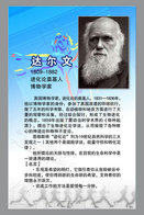 [T31-031 ] Charles Robert Darwin Naturalist, Geologist  Biologist, China Pre-stamped Card, Postal Stationery - Famous People