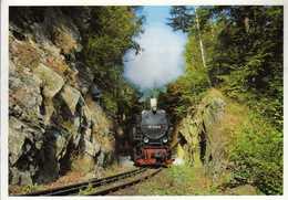 Railway,Trains,Locomotive,Harzer Schmalspurbahnen - Passing In The Rocks Stahlhammer - Trains