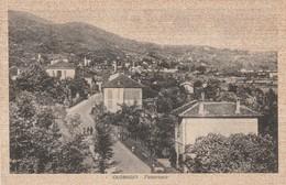VARESE - OLGINASIO - PANORAMA - Varese