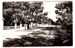 LA TRANCHE SUR MER (85) - LA GRIÈRE - Avenue Forestière - Ed. JEHLY-POUPIN - La Tranche Sur Mer