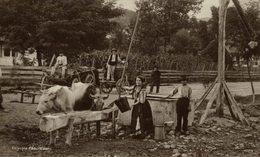 1912   ROMANIA PORT NATIONAL     RUMANIA // ROMANIA. - Rumania