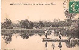 VERT-LE-PETIT    Une Vue Générale,prise Des Marais - Vert-le-Petit