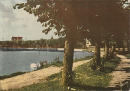 VIGNEUX SUR SEINE - Le Lac Bleu - Vigneux Sur Seine