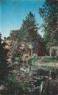 MONTGERON - L' Yerres - Montgeron