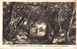 ILE DE NOIRMOUTIER BOIS DE LA CHAISE SOUS BOIS CONDUISANT A L'ESTACADE - Ile De Noirmoutier