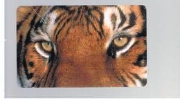 ITALIA (ITALY) - REMOTE - MCI -   ANIMALS TIGER - USED - RIF. 10924 - Schede GSM, Prepagate & Ricariche