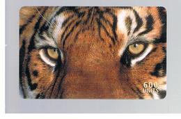 ITALIA (ITALY) - REMOTE - MCI -   ANIMALS TIGER  600 UNITS            - USED - RIF. 10925 - Italy