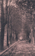 Sion Avenue De La Gare (126) - VS Valais