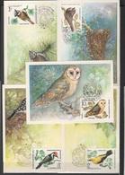 USSR - Soviet Union 1979 Sowjetunion Mi 4883MK-4887MK Birds As Forest Protectors / Vögel Als Waldbeschützer - Vögel
