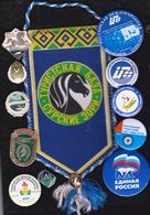 Russia  Lot 12 Pin's Tourisme Nature  Horses Horse Chevaux Cheval (Sv.) - Lots