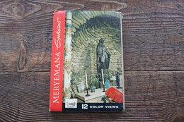 20. Lotto Cartoline La Madonna Di Efeso - Turchia