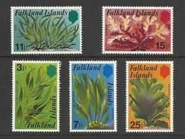 Falkland 1979 Yv 278/282 ** Algues Marines - Falkland Islands