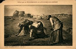 """PUBLICITE PHOSCAO Et Phoscao Bébé """" Les Glaneuses"""" Coin Gauche Rogné - Cartes Postales"""