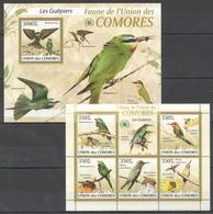 O395 2009 UNION DES COMORES FAUNA BIRDS LES GUEPIERS MEROPS 1KB+1BL MNH - Vögel