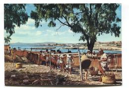 Cyprus - The Fishermen, Dhekelia, Larnaca - C1960's Or 70's Modern-size Postcard - Cyprus
