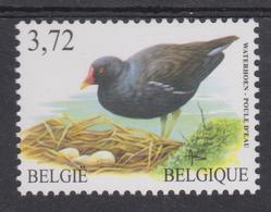 BE 2003 - BUZIN - N° 3212 XX - Poule D'eau - 1985-.. Oiseaux (Buzin)