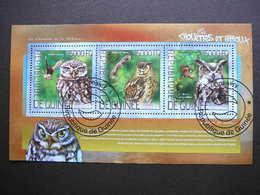 Owls. Eulen. Les Hiboux  # Guinea # 2014 Used S/s # Birds - Owls