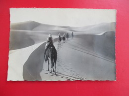 CPA ALGERIE SAHARA MEHARISTES EN PATROUILLE - Argelia