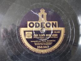 78T - Leise Flehen Meine Lieder Et Ave Maria Par Maria Eggerth - 78 Rpm - Schellackplatten