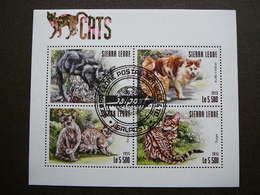 Cats. Katzen. Chats # Sierra Leone # 2015 Used S/s # Domestic Cats - Chats Domestiques