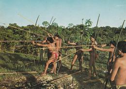 SEXY / ÉROTISME - PIN-UP ? / NAKED MAN SHOOTING With BOW / HOMME NU Au TIR À L'ARC  - VENEZUELA : GUAICA TRIBE (ab677) - Venezuela