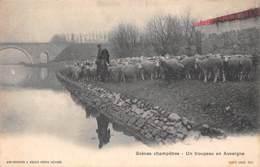 Scènes Champêtres (63) - Un Troupeau En Auvergne - Francia