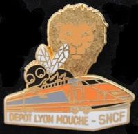 TGV ORANGE - LOCOMOTIVE - LION - MOUCHE - LYON - DEPÔT - SNCF - BALLARD -                (ROSE) - TGV
