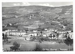 CALDINE ( FIRENZE ) PANORAMA - NV  FG - Firenze