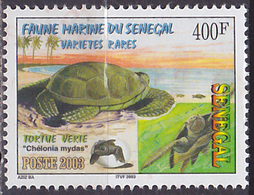 Timbre Oblitéré N° 1695(Yvert) Sénégal 2003 - Tortue Verte - Senegal (1960-...)