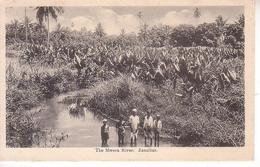 The Mwera River.  Zanzibar - Tanzania