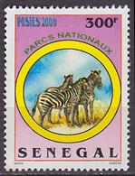 Timbre Oblitéré N° 1642(Yvert) Sénégal 2001 - Parcs Nationaux, Zèbres - Senegal (1960-...)