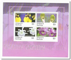 Antigua & Barbuda, Postfris MNH, Flowers, Orchids - Antigua En Barbuda (1981-...)