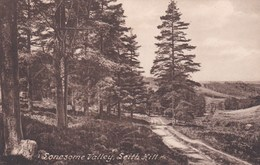 LEITH HILL - LONESOME VALLEY - Surrey