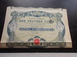 GENERALE DES FEUTRES ET CUIRS (1913) - Shareholdings