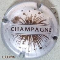 N° 764 FEU D' ARTIFICE - Champagne