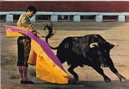 TOROS. REVOLERA. SAVIR. ESPAÑA SPAIN-TBE-BLEUP - Corrida