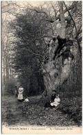 78 MAREIL-MARLY - Le Chataigner Tordu - Autres Communes