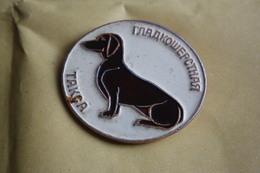 Soviet Pin - Dachshund - Teckel - Dackel - Bassotto - Dog Collection - Animals