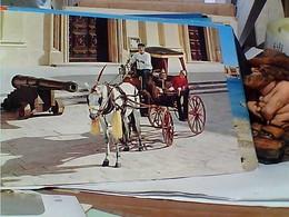 MALTA  KARROZIN  CARROZZA CALESSE CAVALLO HORSE  N1980 GR1107 - Malta