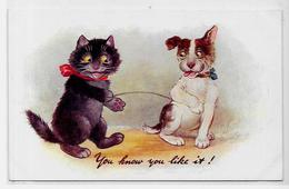 CPA Chat Cat Position Humaine Non Circulé Oilette Tucks - Katten