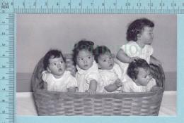 """Les Quintuplées Dionne # 7 - CPM  """" Jumelles Dionne""""  Né En 1934, Dans Un Panier A Linge, Ont, Canada, Reproduction - Groupes D'enfants & Familles"""