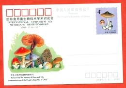 China 1989. Postcard With Original Stamp Mushroom. - 1949 - ... People's Republic