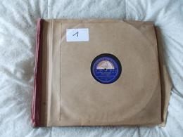 Lot De 13 78T Album 1 Malko Arbos Weingartner Mengelberg Coates Von Hoesslin - 78 Rpm - Schellackplatten